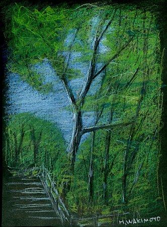 20110807_pencil010s.jpg